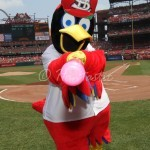 Fredbird at bat!